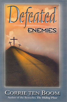 Book: Defeated Enemies